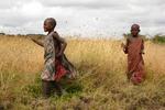 """Mzungu, Mzungu!"" (Tanzania) by Brianna McCann"