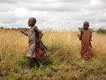 Mzungu, Mzungu! (Tanzania) by Brianna McCann